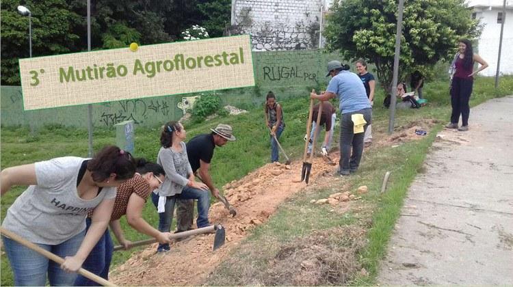 3° Mutirão Agroflorestal Urbano acontece neste domingo