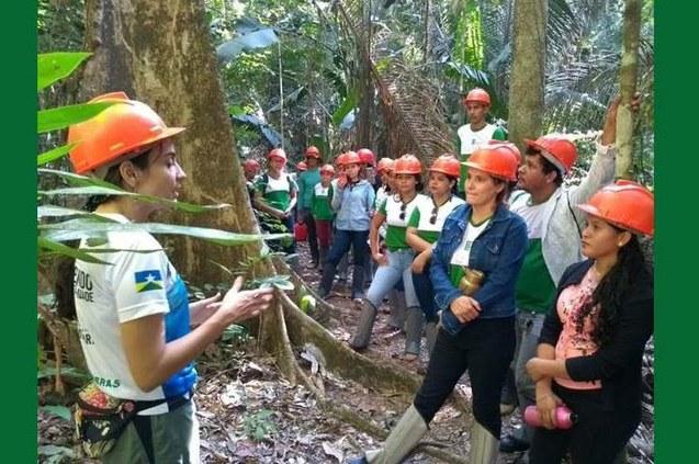 Visita Técnica da turma de Florestas
