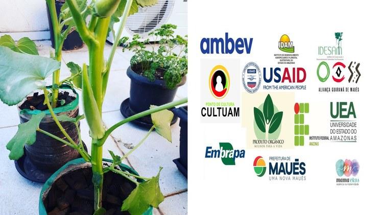 1ª Semana da Agricultura Familiar e Semana Nacional do Alimento Orgânico em Maués