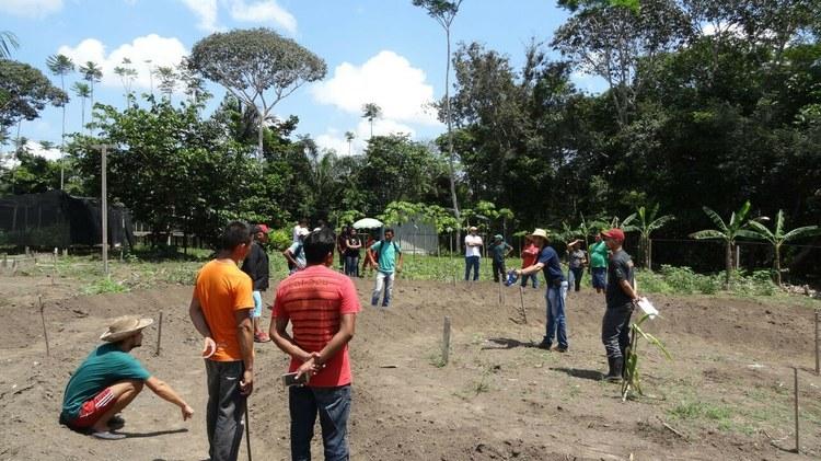 """Durante todo o dia 02 de setembro de 2017, no IFAM campus Maués foi realizada a quarta do Projeto de Extensão """"Horta mandala: uma alternativa para geração de renda e a promoção da agrobiodiversidade""""."""