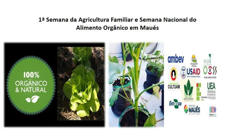 Inscrição no site da 1ª Semana da Agricultura Familiar e Semana Nacional do Alimento Orgânico em Maués