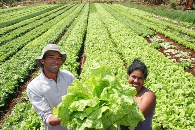 agricultura-familiar.jpg