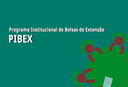 PIBEX2018